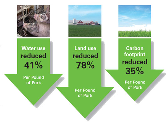 Sustainability Pork Production